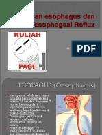 7 dr. Elma-GERD
