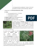 ecologia 5-2