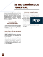 Caruncula.pdf