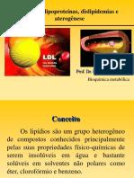 033_BM Aula  7 lipideos 2011.pdf