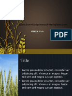 183591574-Agricultural-Rice-Technology-PPT-Template.ppt