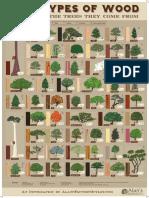 53-types-of-wood-printable.pdf
