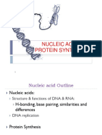 Nucleic Acids and Protein Synthesis Revised
