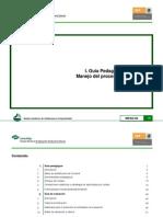 Guias Manejo Proceso Administrativo