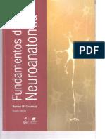 Fundamentos de Neuroanatomia