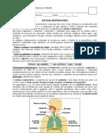 Humaita Sistema Respirator i o 2015