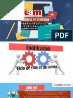 Codificacion Analisis de Sistemas (1)