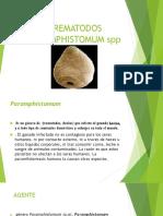 PARAMPHISTOMUM spp.pptx