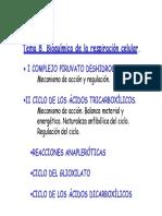 Tema 8.1 Bioquímica de La Respiración Celular i 2016. Suma _modo de Compatibilidad