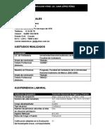 Formato Curriculum Vitae.-ejemplo
