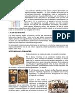 Las Artes Menores, Mayores, Prehistorico y Precolombino