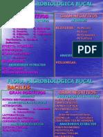i[1].Ecosistema Oral
