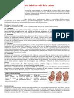 Monográfico Luxación y Displasia Congénita de Cadera