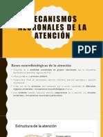 MECANISMOS NEURONALES DE LA ATENCIÓN