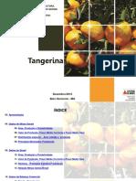 perfil_tangerina_dez_2015[1].pdf