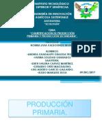 4.4.1 Producción Primaria y Secuandaria.
