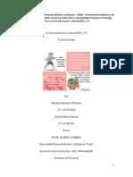334113134-Accion-Psicosocial-y-Salud-403032-173.docx