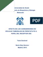 91814265-CANNABINOIDES-Y-CANCER-DE-PROSTATA-tesis-doctoral-de-Nuria-Olea-Herrero.pdf