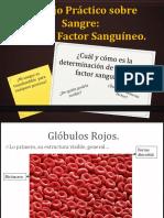 Trabajo Práctico Sobre Sangre, Presentación.