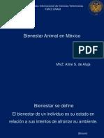 1 Bienestar Animal en México