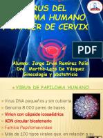 95039012-Virus-Del-Papiloma-Humano.pptx