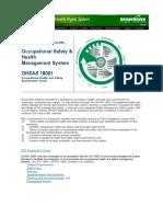 OHSAS 18001 manual - Brookhaven.pdf