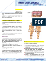 21533-Ficha quemaduras (1).pdf