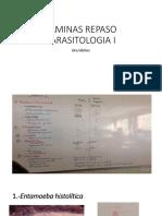 Laminas Repaso Dra. Vilchez Parasitologia i (1)