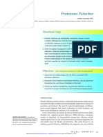Protozoan Infections
