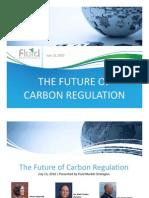Carbon Regulation 071310