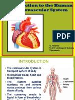 Cardio Vascular Flo.ppt