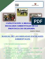 106751747-Capacitacion-a-Brigadistas-Escolares-Ambientales-de-La-Provincia.pptx