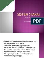 8. SYARAF