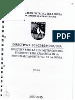 Directiva Caja Chica-oga