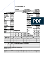 DAYLY MUD LOGGING REPORT.pdf