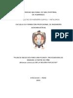 148677644-PLAN-DE-NEGOCIOS-VINAGRE-DE-PINA.pdf