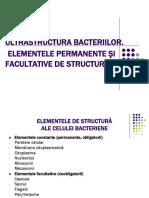 Ultrastructura bacteriilor_18