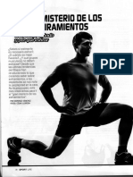 Estiramientos Sportlife