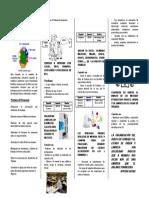 Boletin Programa de Las 5 S444