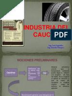 PRESENTACIÓN DEL CAUCHO..pptx