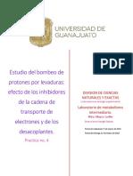 Practica 4. Bombeo de protones por levaduras