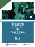 Indicadores de RSE Para PYMES 2008