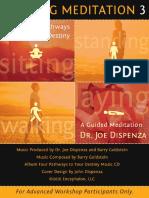 DR JOE_Vertical Walking Meditation 3_Instruction Booklet