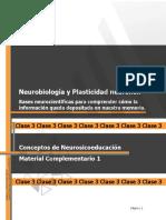 Apunte_G_Actividad_Pr_ctica - VER.pdf