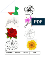 Small Flowers (Hibiscus,Rose,Orchid,Sunflower)
