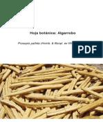 Hoja_Botanica_Algarrobo_2012.pdf