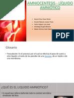 Amniocentesis Líquido Amniótico