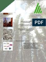 Estados Financieros Empresas CMPC
