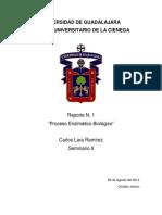 """""""Proceso Enzimático Biológico"""" - Seminario 2.docx"""