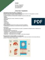Resumen Fisiologia Celular P1